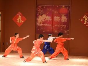 Wushu 3