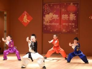 Wushu 4